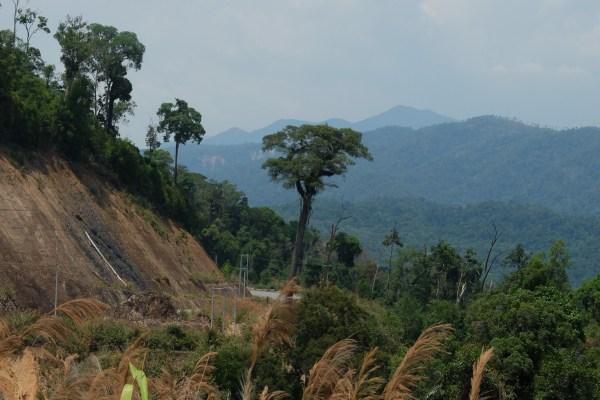 Bécane et Pétrolette #7 : De retour sur la route… direction Vietnam !