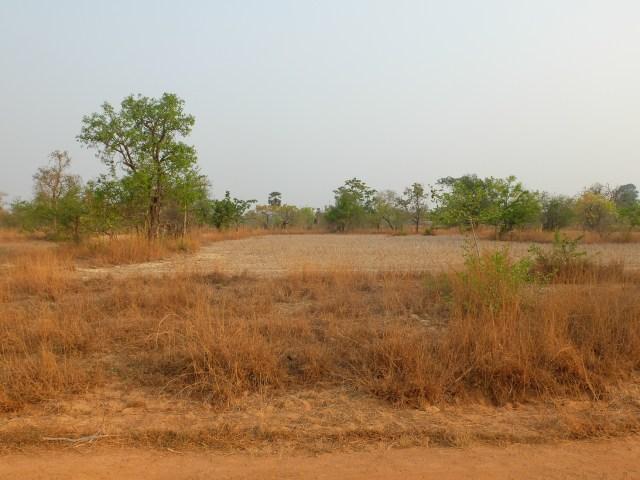 Plateau bolaven laos-2