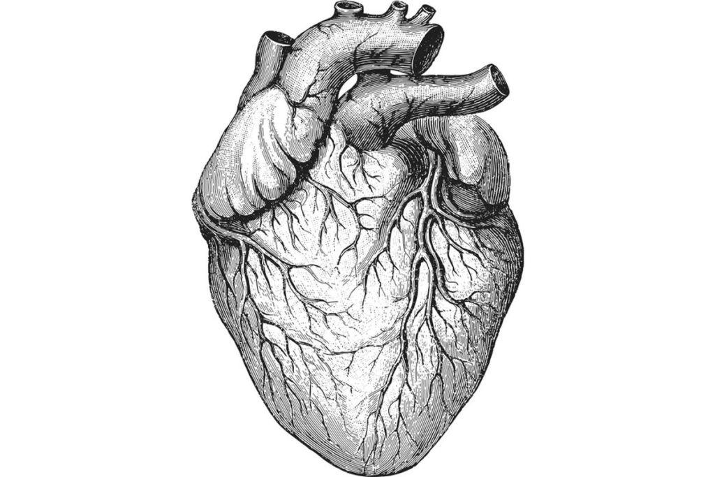 heart-valve-damage