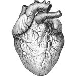Rhofade may come with a heart valve damage risk