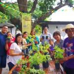 Urban Gardening Workshop