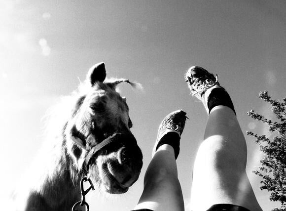 Eleanor Bennett Legs and Horse