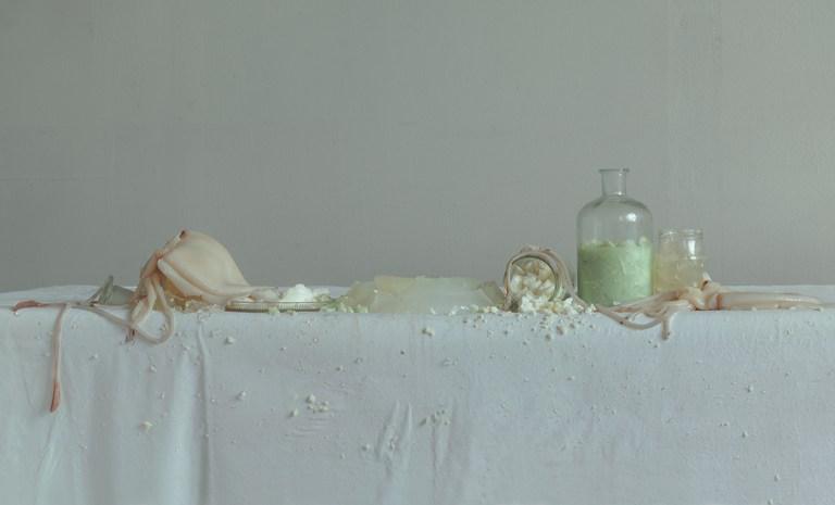 Organic Still Life by Evelyn Bencicova