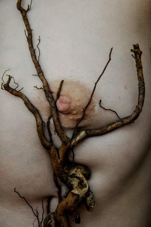 Elena Helfrecht - Roots
