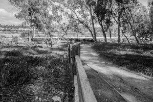 rocha_19feb17_hosp-grove-park30001