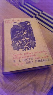 farleighbirds-2