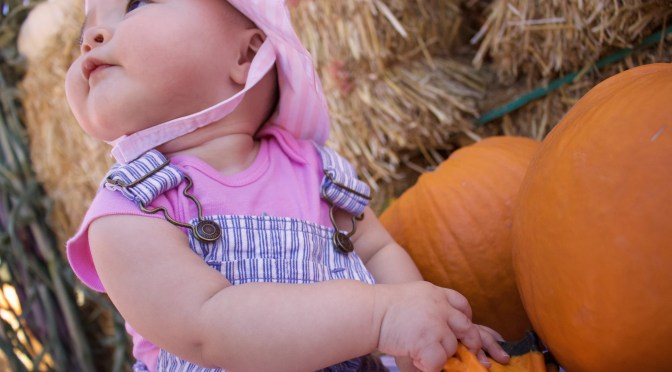 Addy's First Visit to the Pumpkin Patch