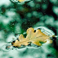 La meditación es como flotar