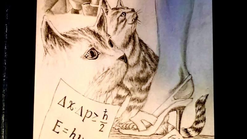 Viviana e i Gatti di Schrödinger