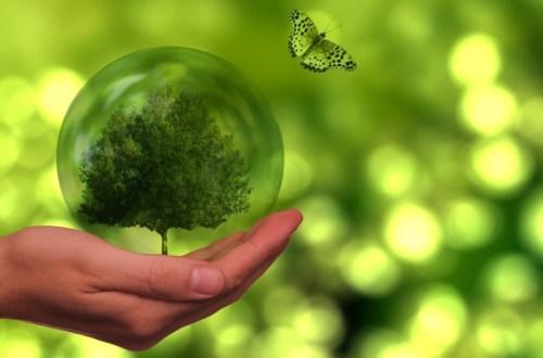 Duurzaam leven tips