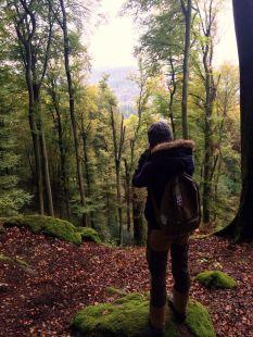 Ausblick Eifel