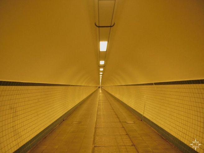 tunnel-schelde-antwerpen