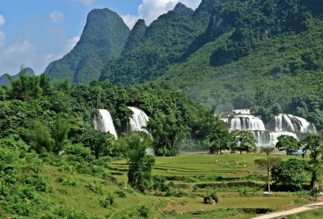 vietnam-asien-dschungel