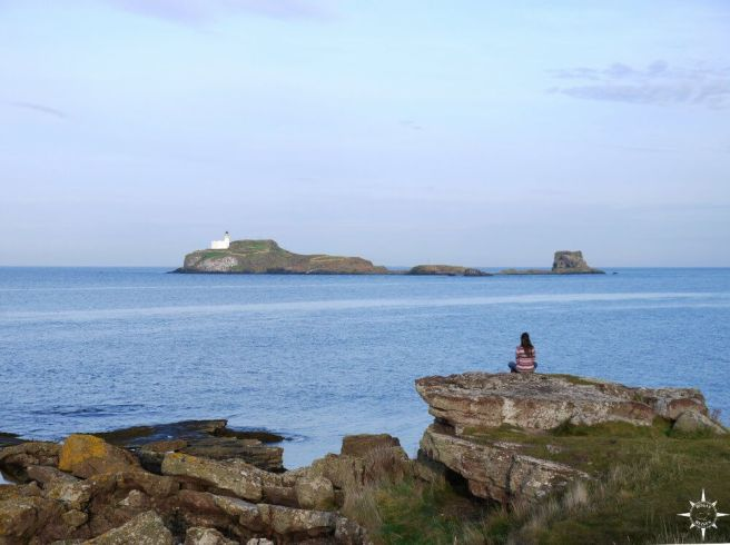 east-lothian-coast-walk-18