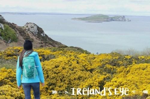 Irland Reise Dublin Ausflug Ireland's Eye