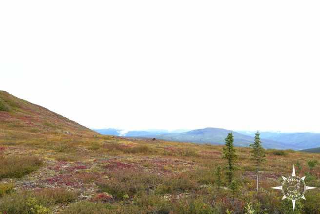 Rosas-Reisen-Kanada-Alaska-Rodtrip-Top-of-the-World-Highway (4)