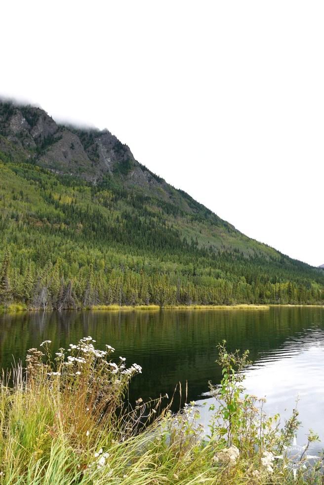 Rosas-Reisen-Roadtrip-Kanada-Alaska-Ufer-Pickhandle-Lake