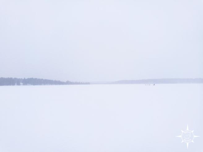 Äkäskero-Finnland-Rosas-Reisen-Schlittenhunde-Wildnistour