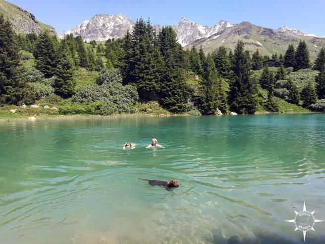 Alp-Flix-Alpen-Schweiz-Rosas-Reisen-See-Hund