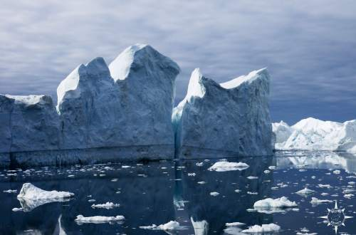 Rosas-Reisen-Groenland