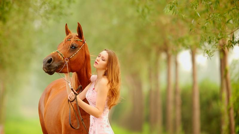 The Man on a horse and a dreamer