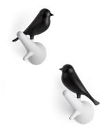Oiseaux noirs, Qualy