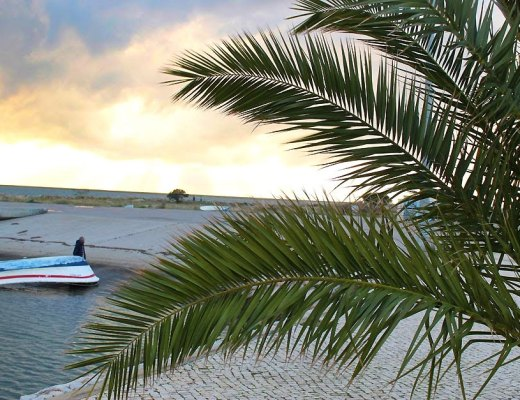 Carnet de voyage : Destination le sud du Portugal à la découverte de Olhao