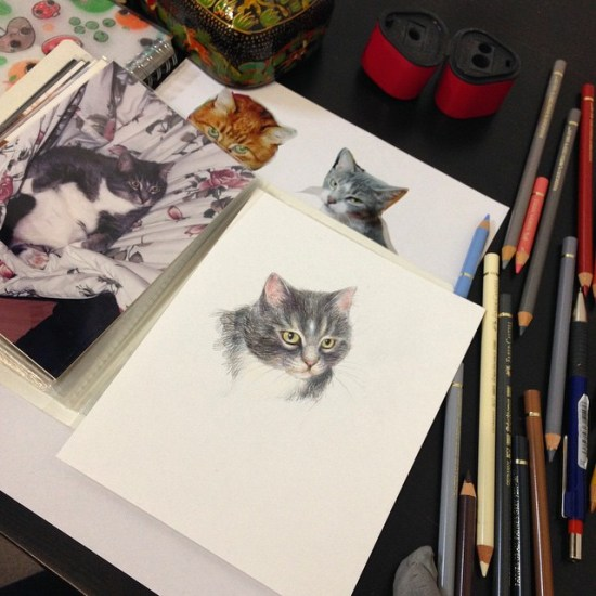And drawing more cats.