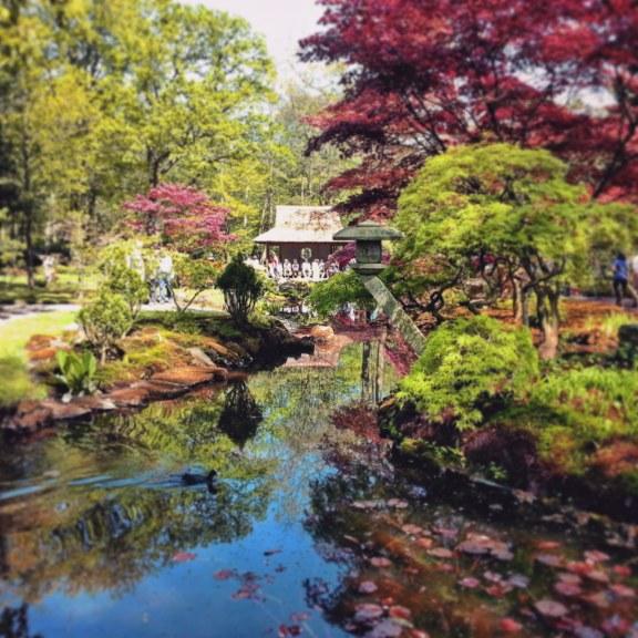 Japanese Garden, The Hague.