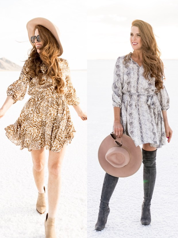 cute-work-dress-tara-gibson
