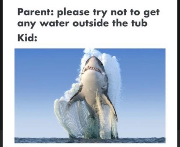 hilarious mom memes