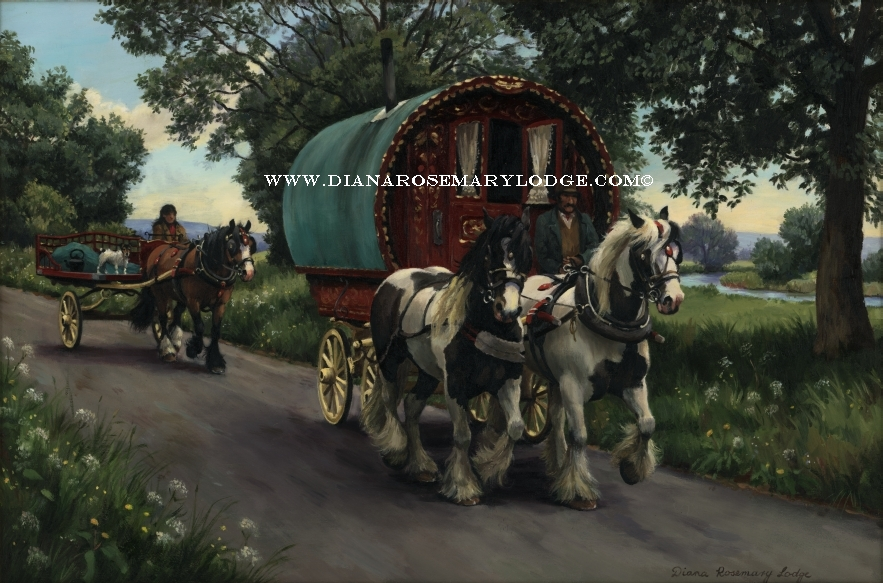 Gypsy vanner paintings by Diana Rosemary Lodge