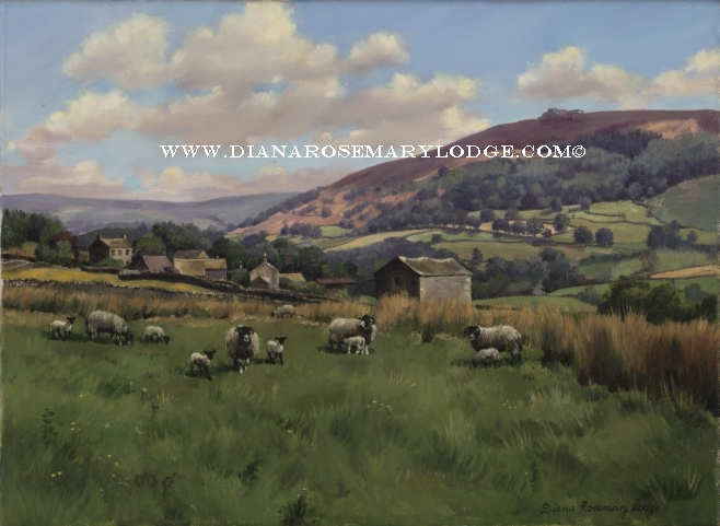 Paintings of The Yorkshire Dales and sheep by Rosemary Lodge