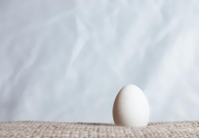 Jackie and the Egg: A Story about Energy Shields