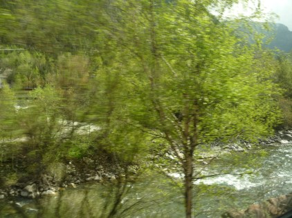 Alpine stream south of the Brenner Pass