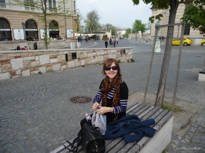 Stopping for a break and checking out the map again Buda Castle Hill