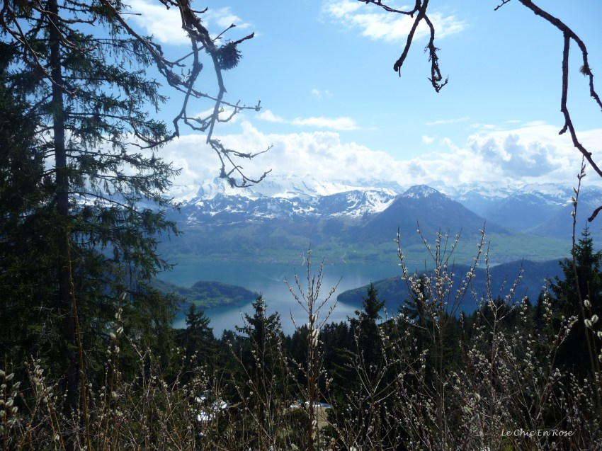 View from Rigi Kaltbad down to Lake Lucerne