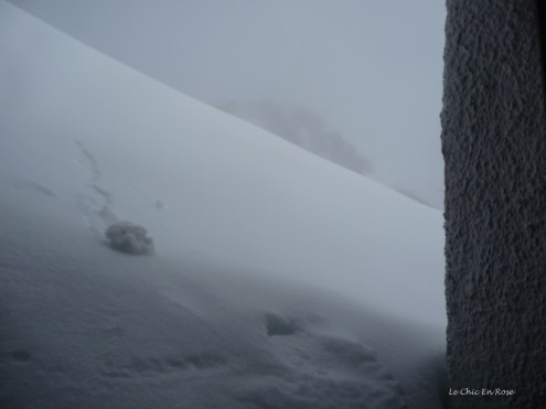 The door at the side of the restaurant was open. This was the view looking out!