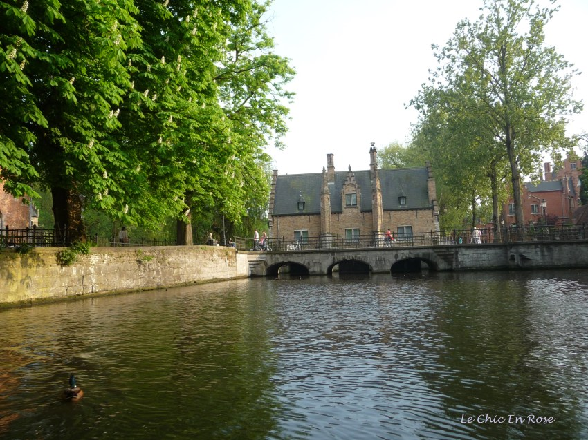 Bruges cruising along the canals