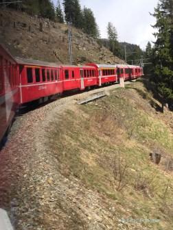 Bernina Express Climbing Up Towards The Bernina Pass