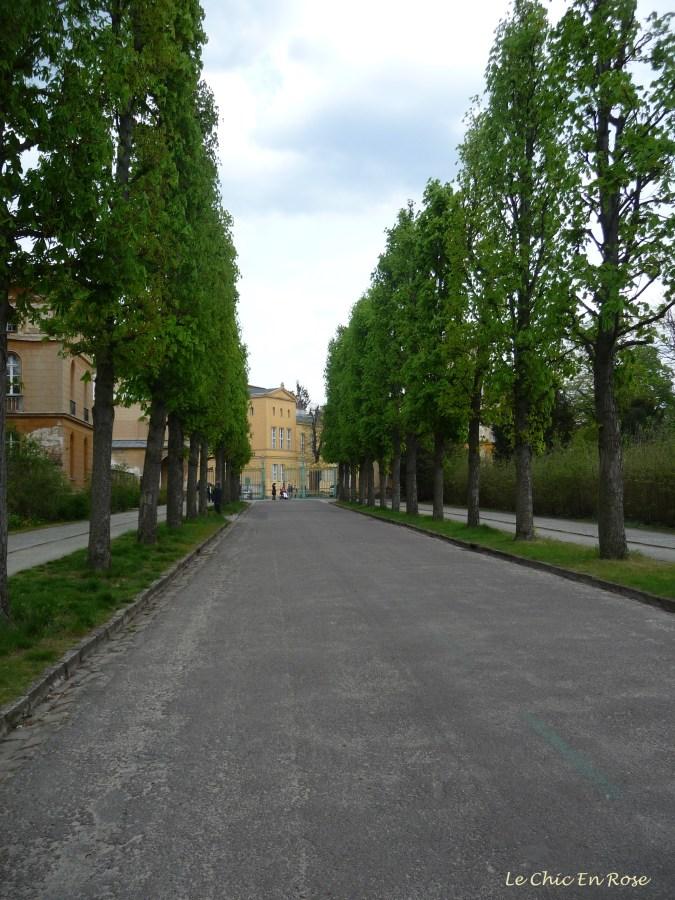 Driveway Leading Into Sanssouci Park