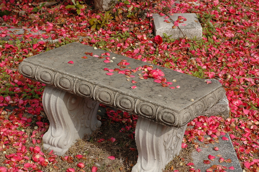 Bench in flowers