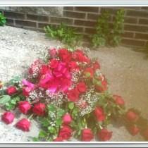 little falls florist 13365