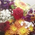 Flowers Little Falls