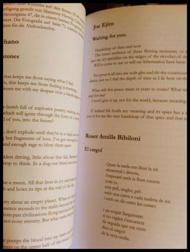 Driesch roser amills morbo traduccion