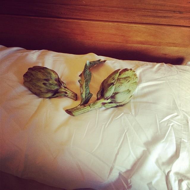 alcachofas cama roser amills y victor amela