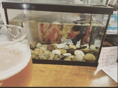 Bar con pecera sobre la barra #muyfengshui ?