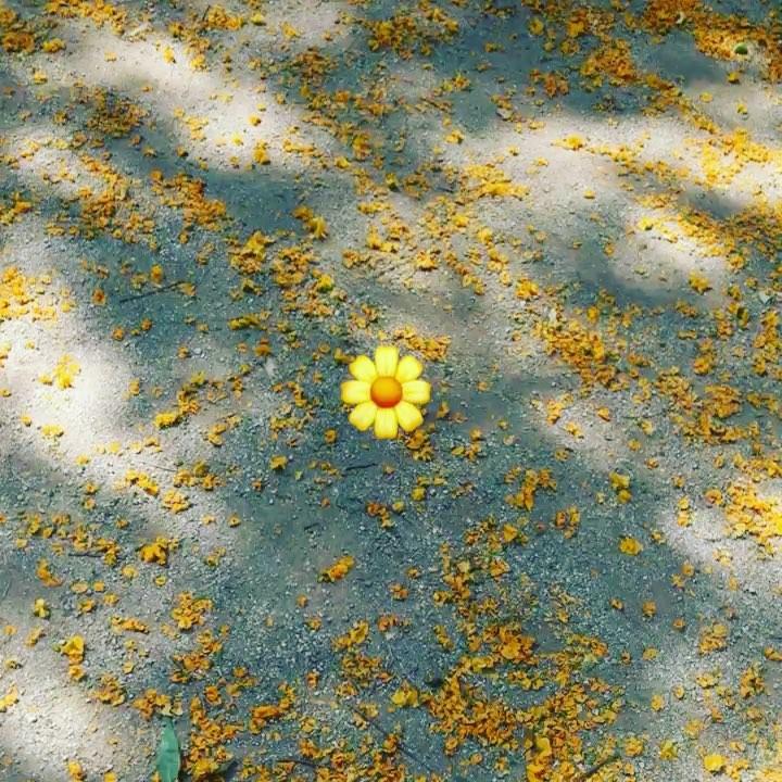 La tierra se ríe en flores. Cummings