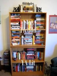 Old lit, fiction, & YA lit