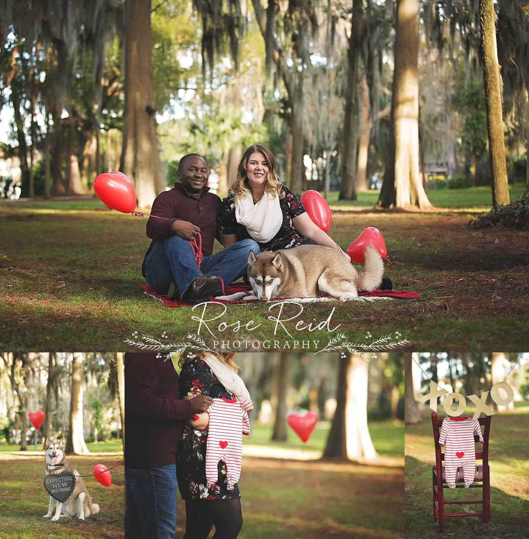 Valentine's Day Pregnancy Announcement Orlando